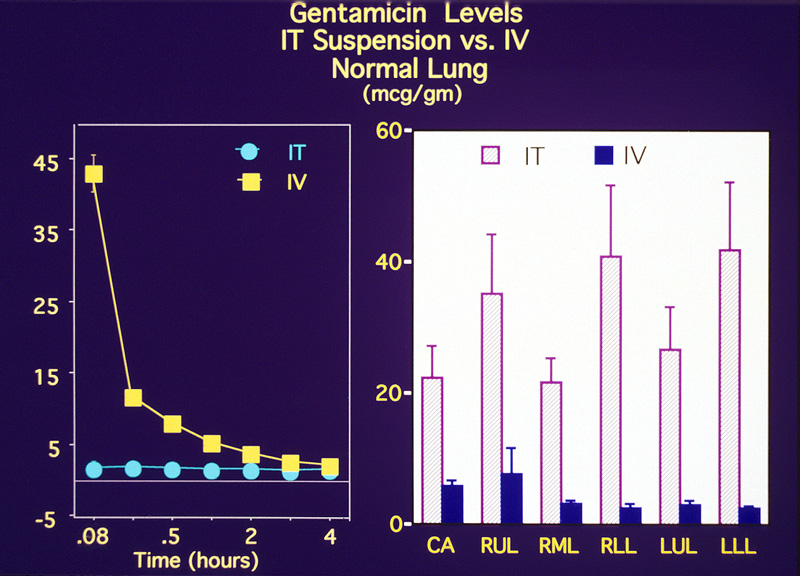 Comparison of IT and IV administration of gentamicin, from Wikipedia article on Liquid Breathing.