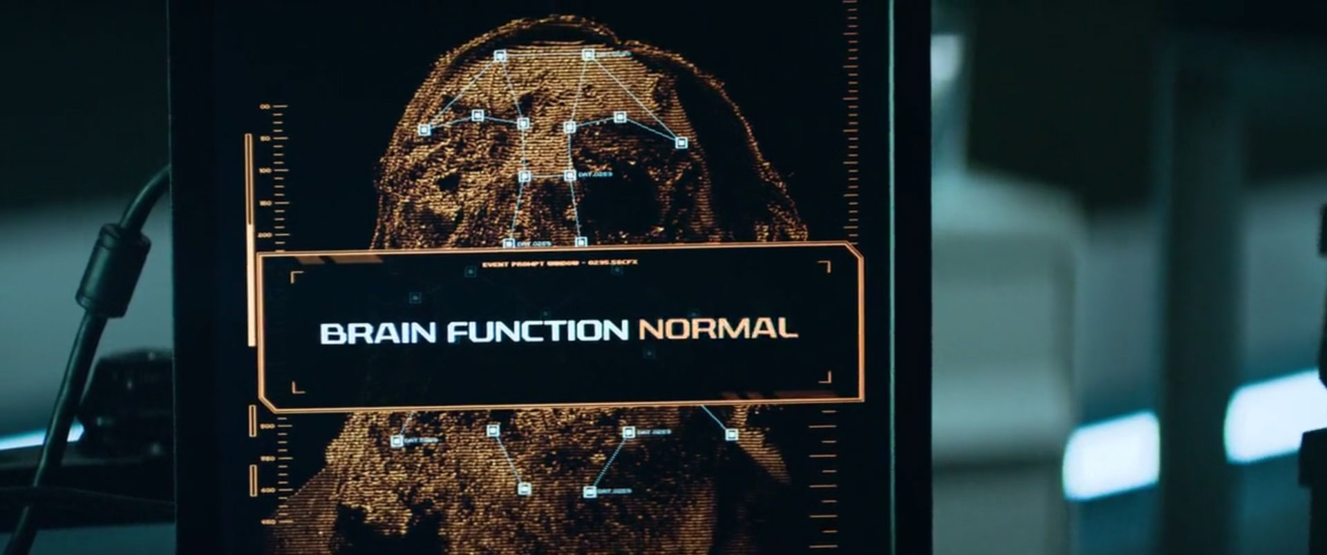brain function normal