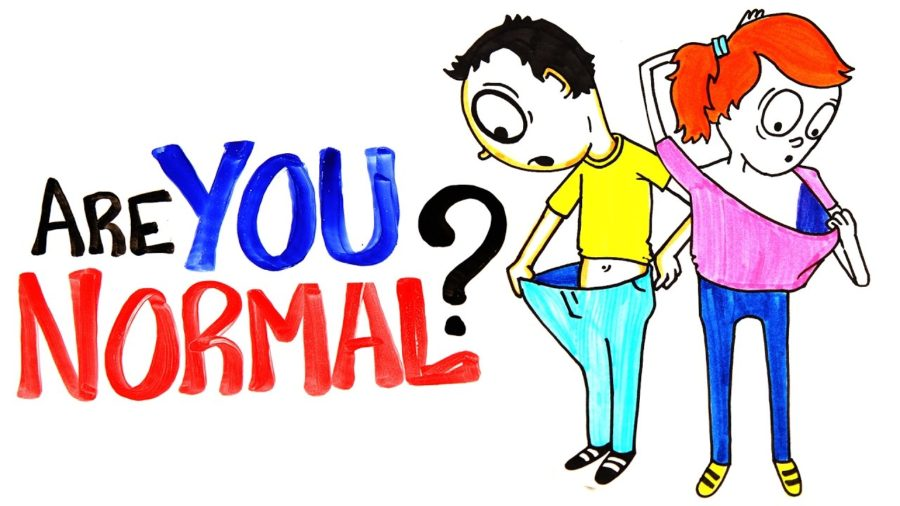 "video asks, ""Are You Normal?"" – gets 2 million views in 24 hours"
